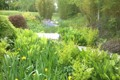 One Of Our Finished Bog Gardens