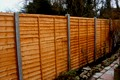 Some Winter Fencing